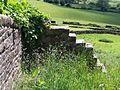 Stone walls in High Bradfield - geograph.org.uk - 1634382.jpg