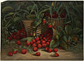 Strawberries (Boston Public Library).jpg