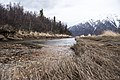 Stream feeds into Upper Tazimina near Pedro bay (1ec14d0a-10ee-47be-96b2-7b784c013228).jpg