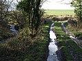 Streams, track and bridge - geograph.org.uk - 719900.jpg