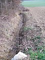 Stuhlgraben am Waldrand zu GH.jpg