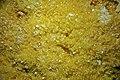 Sulfur (Baja California, Mexico) 4.jpg
