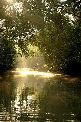 Sundarbans - Image: Sun in Sunderbans