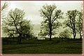 Suzdal, Vladimir Oblast, Russia - panoramio - Андрей Александрович… (15).jpg