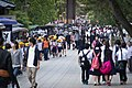 Swarmed in Nara, Japan; May 2012.jpg