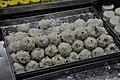 Sweet - Banke Bihari Mandir Area - Vrindavan - 2013-02-22 4789.JPG
