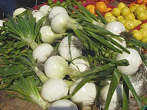 Sweet onion is a variety of onion that is not ...