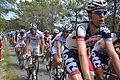 TDF2012 13e étape peloton 10.JPG