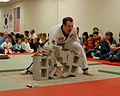Taekwondo Head Instructor Breaks Five Patio Bricks.jpg