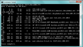Tal.is-tracert.png