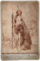 Tall Bear by LA Huffman, 1879.png