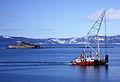 Taubåtkompaniet frakter dykdalb (5528635619).jpg