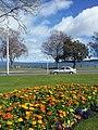 Taupo lake front.jpg