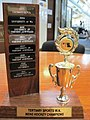Tertiary Sports WA Men's Hockey Trophy.jpg