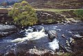 The Ey Burn, Glen Ey - geograph.org.uk - 913114.jpg