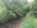 The Mule or Afon Miwl viewed downstream - geograph.org.uk - 1320283.jpg