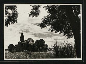 Lake Victoria - Bismarck Rock