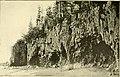 The Pine-tree coast (1891) (14592882399).jpg