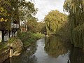 The River Loddon - geograph.org.uk - 278986.jpg