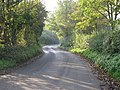 The Road To Barnham Broom - geograph.org.uk - 274647.jpg