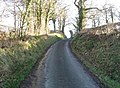 The Road To Llangyniew - geograph.org.uk - 319565.jpg