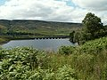 The northern arm of Woodhead Reservoir - geograph.org.uk - 884411.jpg