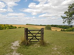 Therfield Heath gate with Hertfordshire Way sign 2020-07-17.jpg
