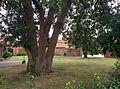 Thorpe Village houses Nottinghamshire.jpg