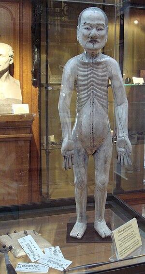 Musée d'histoire de la médecine - Japanese acupuncture mannequin and tools, brought to Paris by Isaac Titsingh.