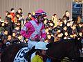 Tokyo Daishoten Day at Oi racecourse (31866431131).jpg