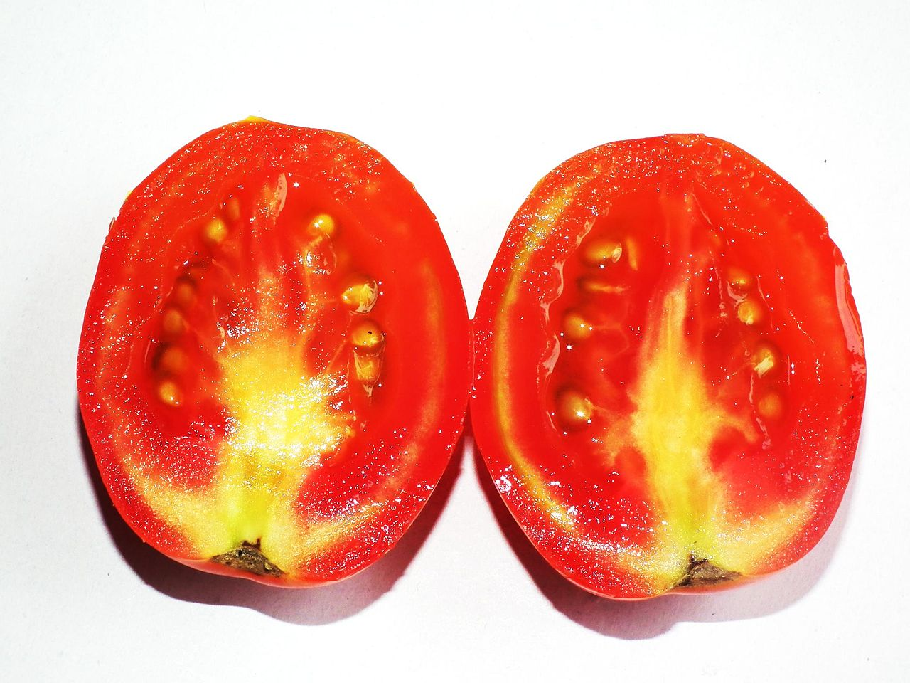 Filetomato Cross Section View Wikimedia Commons Exhaust System Diagram Http Wwwchicagocorvettenet Diagramviewphp