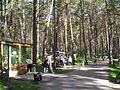Tomskaya Pisanitsa minizoo.jpg