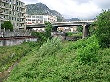 Il letto del torrente Chiaravagna invaso da una fitta vegetazione, con il viadotto dell'A10 e sullo sfondo a sinistra il monte Gazzo