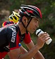Tour de France 2013, quinziato (14869458002).jpg