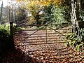 Track to Beaconhill Cottage - geograph.org.uk - 1616300.jpg