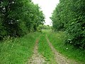 Track to Kirkburn - geograph.org.uk - 1374271.jpg