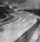 Traleika Glacier, valley glacier with moraine on the right, August 19, 1960 (GLACIERS 5090).jpg