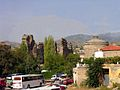 Turkey-2895 (2217182982).jpg