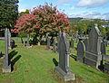 Turning leaves in Edgerton Cemetery.jpg