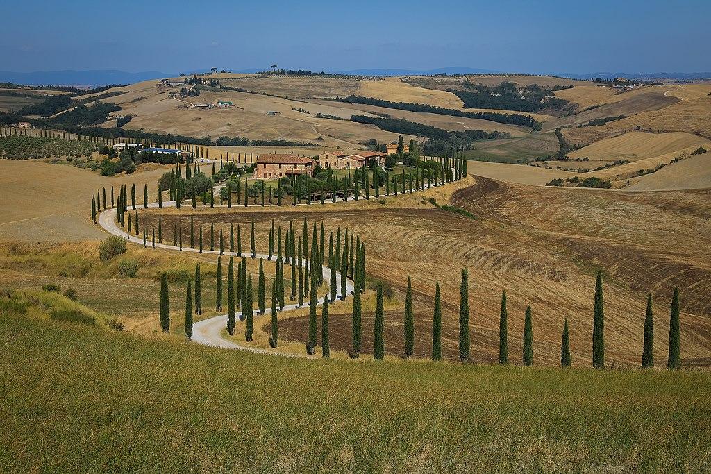 Die von Zypressen gesäumte Auffahrt des Agriturismo Baccoleno, Asciano