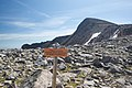 Tyndall Glacier and Hallett's Peak - panoramio.jpg