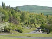 UI-arboretum-spring-moscow-id-us