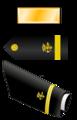 USA - PHS - O1 insignia.png