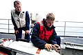 US Navy 100721-N-2953W-785 Fire Controlman 3rd Class Joseph Marsac and Fire Controlman 1st Class Eric Mcquitty load an Evolved Sea Sparrow Surface Missile aboard USS Carl Vinson (CVN 70).jpg