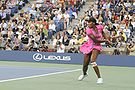Venus Williams -  Bild