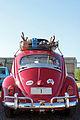 VW 1200 Export (1962) - Antarctica 1 - DSCF8145.JPG