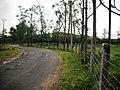Vagamon Grass lands - panoramio (2).jpg