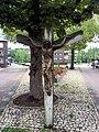 Valkenswaard kruisbeeld Karel Mollerstraat.jpg