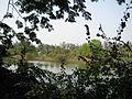 Vanganga Lake, Dadara Garden - panoramio.jpg