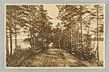 Vanha harjutie, Kuikonniemi, Palovartijan mäki, Pöllänlampi, Mustalahti, I. K. Inha 1890s PK0368.jpg